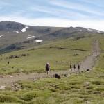 Climb Mulhacen from Capileira