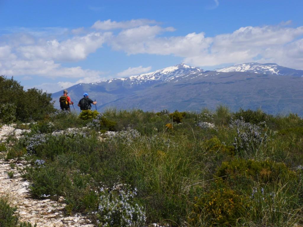 Walking in the foothills of the Sierra Nevada
