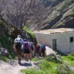 Spring guided walks Alpujarra