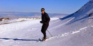 Snowshoe Hoya de Mora